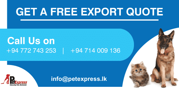 free export quote pet express