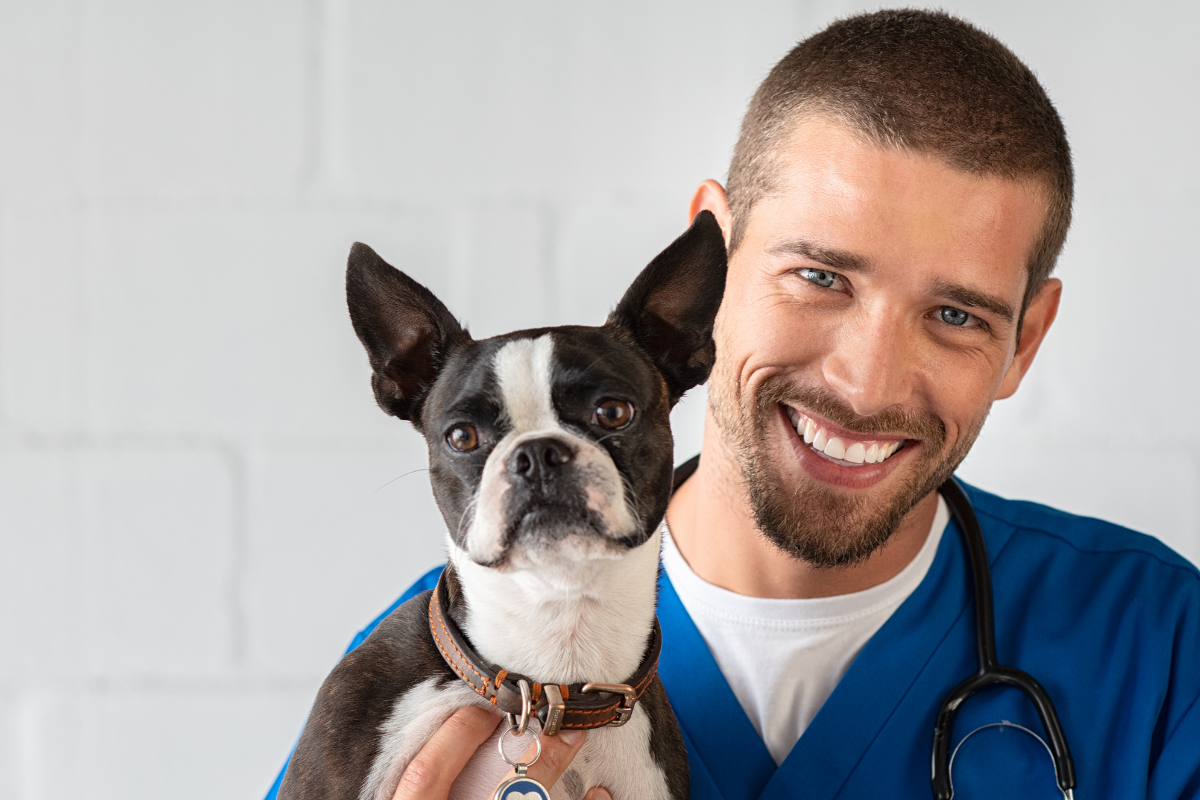 Rabies Neutralizing Antibody Titre Test (RNATT) done at EU / OIE approved Laboratories for Pets in Sri Lanka